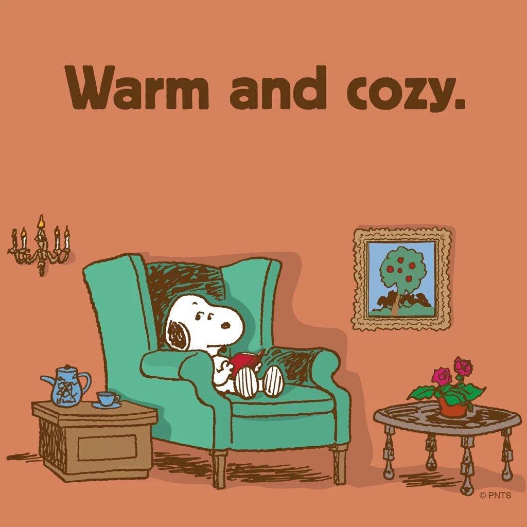 warmandcosy